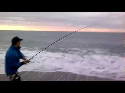 robalo gigante spinning! absolutely extreme!