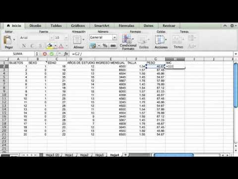 ¿Cómo construir una base de datos en excel? y analizarlos PARTE 1