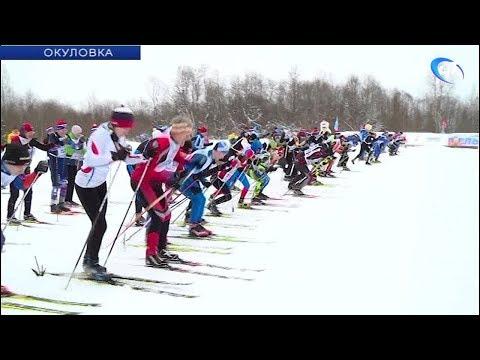 Более 5 тысяч жителей Новгородской области приняли участие в «Лыжне России»