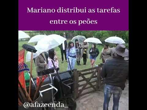 Mariano distribui as tarefas entre os peões A Fazenda 12 16/10/2020