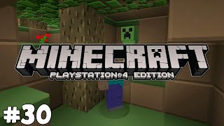 Minecraft PS4 - NEW TEXTURE PACK FOR ME! - Survival [30]