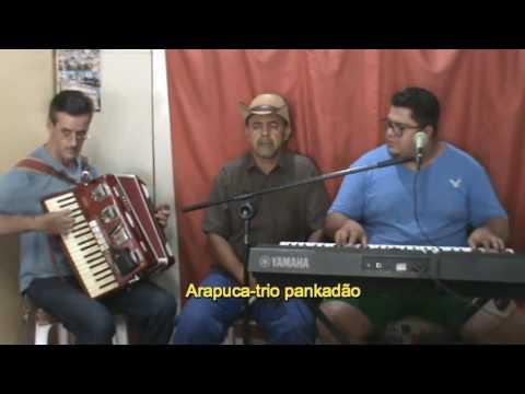 TRIO PANKADÃO DE SÃO GOTARDO: ARAPUCA