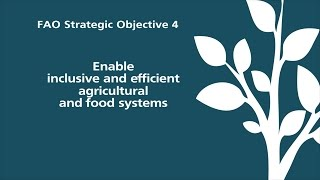 FAO Strategic Objective 4