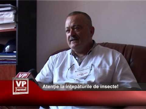 Atenție la înțepaturile de insecte