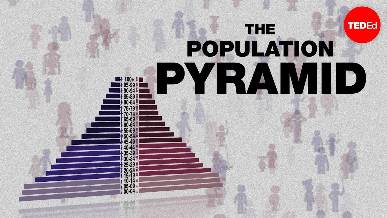 Video: What do population pyramids tell you about the future?