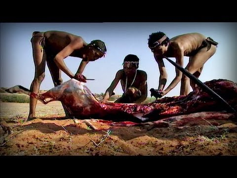 Bloody hunting (Bushmen)