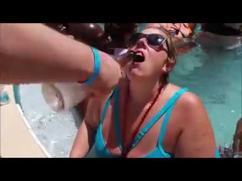 Porn euro video orgy