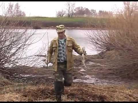 рыбалка в беларуси весной видео
