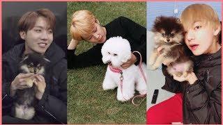 Video BTS Cute Animals Compilation MP3, 3GP, MP4, WEBM, AVI, FLV April 2019