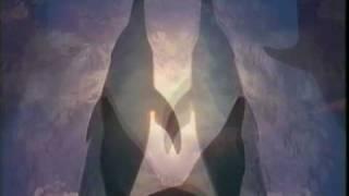 Video OTK - UZEL