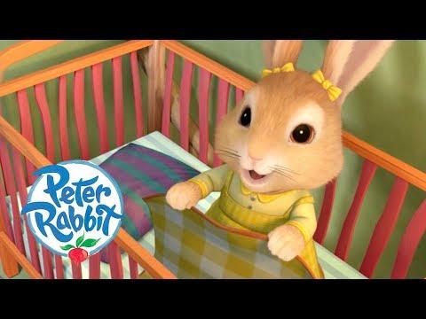 Peter Rabbit - Little Rabbit Bedtime Stories | Cartoons for Kids