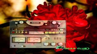 Oromo Music Ali Shabbo . Sodaa Namaa Lakkisi.. Audio Music Only
