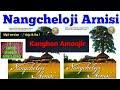 Nangcheloji Arnisi |Kanghon Amonjir|Karbi Song|Karbi music|Karbi video| Karbi new song