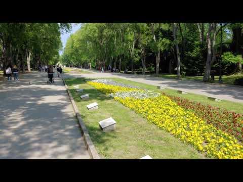 LG G7 ThinQ sample videos