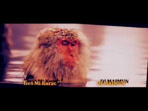 DJ Majmun & Dr Znojo: