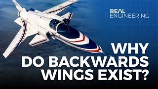Video Why Do Backwards Wings Exist? MP3, 3GP, MP4, WEBM, AVI, FLV September 2019