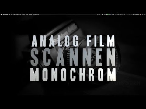 Analog-Film scannen - Schwarzweiß - EPSON V600 Photo [GER/DE]