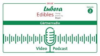 Gärtnerradio Podcast #2: Ewiges Gemüse® - Was ist das?
