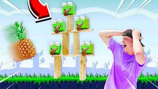 Video PLAYING ANGRY BIRDS IN REAL LIFE CHALLENGE! MP3, 3GP, MP4, WEBM, AVI, FLV Agustus 2019