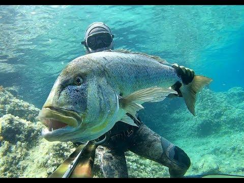 "Spearfishing Croatia - ""Destination unknown"" by Max 2018"