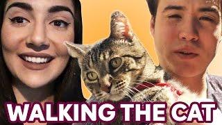 Video Walking Our Cat For The First Time • Saf & Tyler MP3, 3GP, MP4, WEBM, AVI, FLV Oktober 2018