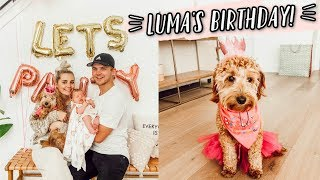 OUR PUPPY'S FIRST BIRTHDAY PARTY!! by Aspyn + Parker