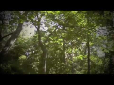 Tekst piosenki Orla Gartland - Skinny love po polsku