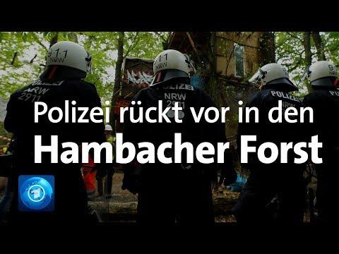 Streit um Hambacher Forst: Polizei rückt mit Großaufgebot vor