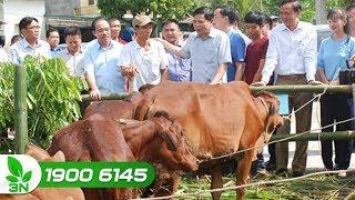 Bộ trưởng Nguyễn Xuân Cường làm việc tại Tuyên Quang về thực hiện nghị quyết 26