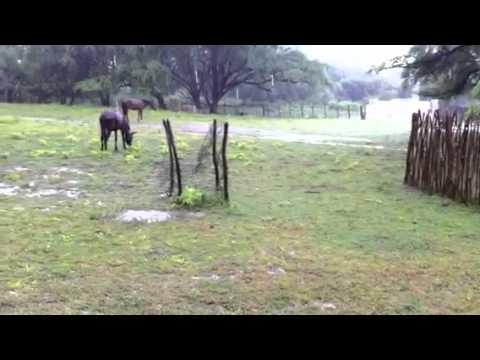 Fazenda São Domingos Chuva no Sertão da Paraiba