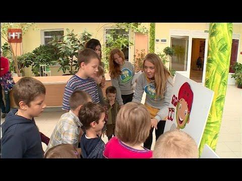 В Новгородской области стартовала акция «Навстречу безопасности»
