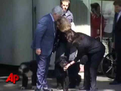 'Bo', el perro de los Obama