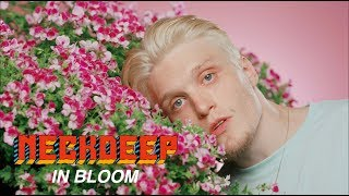 Nonton Neck Deep   In Bloom  Official Music Video  Film Subtitle Indonesia Streaming Movie Download