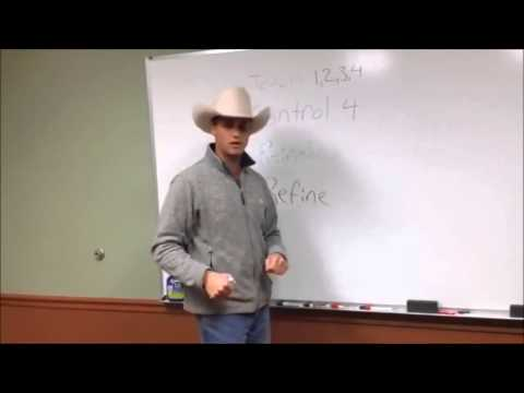 Rose Horsemanship- 4 Stages of development explained