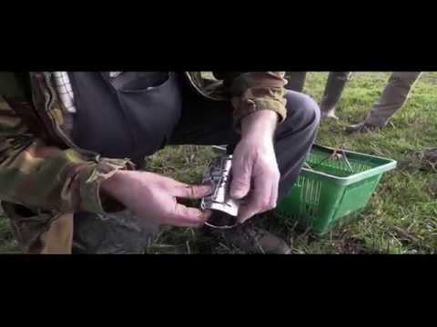 Pest Control: A Cumbrian Molecatcher