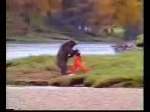 "Best tv ad - John West salmon ""fighting bear"""