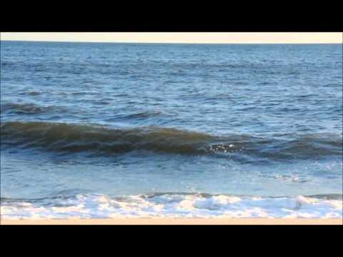 Reading the Beach – Understanding Waves & Wave Action