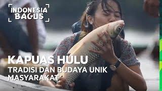 Video Tradisi dan Budaya Unik Masyarakat Kapuas Hulu - Indonesia Bagus MP3, 3GP, MP4, WEBM, AVI, FLV Desember 2018