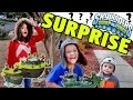 Skylanders Toy Surprise - FunPlay HideAway Skylands & Flynn's Ship + More Swap Force Acc. by Power A