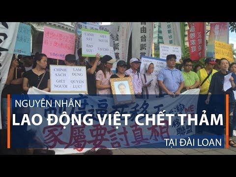 Nguyên nhân lao động Việt chết thảm tại Đài Loan | VTC1 - Thời lượng: 78 giây.