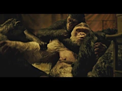 Caesar Kills Winter - Death Scene | War for the Planet of the Apes (2017)#LOWI