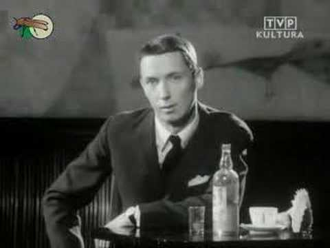 Tekst piosenki Wojciech Młynarski - Jesteśmy Na Wczasach po polsku
