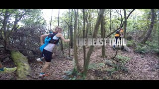 Video The Beast Trail - wild run in Taiwan MP3, 3GP, MP4, WEBM, AVI, FLV November 2018