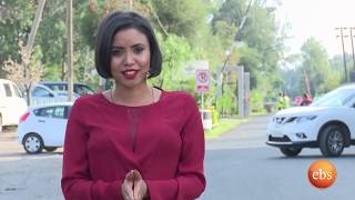 ኢትዮ ቢዝነስ ስራ ፈጣሪዎች (የጥፍር ውበት መስጫ)/Ethio Business Season 1 Ep 2