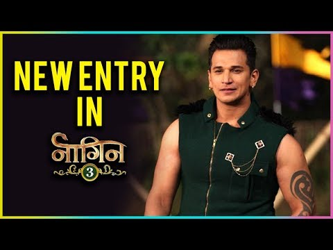 Prince Narula To Join Naagin 3 Cast
