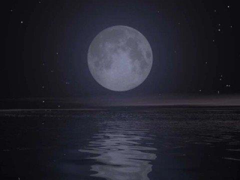 , title : 'e ruberò per te la Luna - Negramaro'