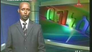 Ethiopian Business News - March 26, 2010