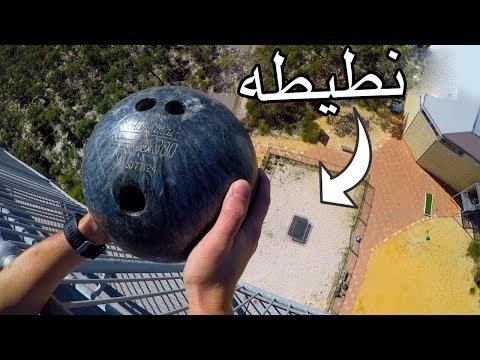 العرب اليوم - شاهد:ما سيحدث لو ألقيت كرة بولينج على نطيطه