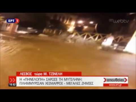 Η «Πηνελόπη» σάρωσε τη Μυτιλήνη | 29/11/18 | ΕΡΤ