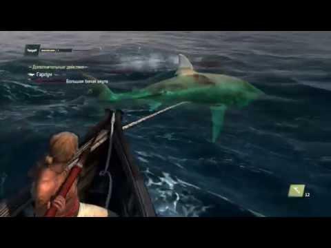 ассасин крид 4 рыбалка